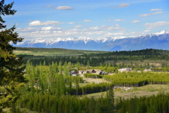 Forest-Crowne-Aerial-4